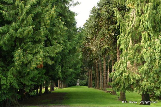 Jardin de Powerscourt, Irlande 5723