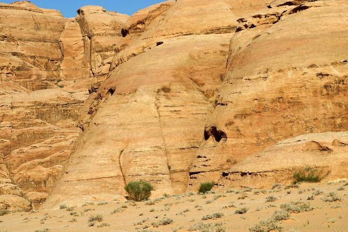 Wadi Rum 702