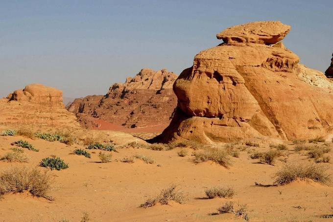 Wadi Rum 707