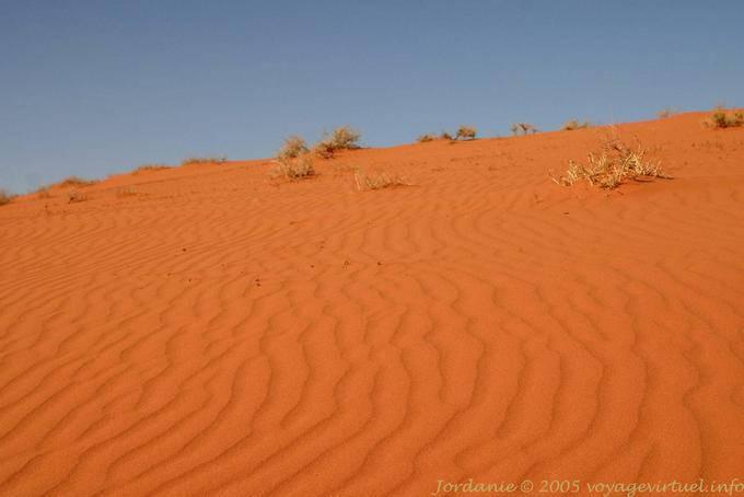 Wadi Rum 725