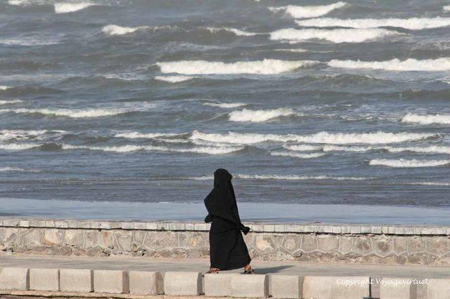 Aden 1186