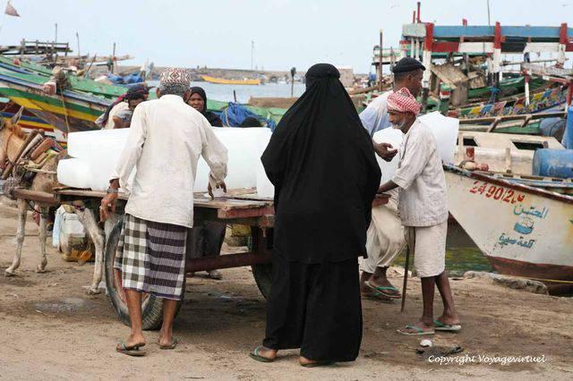 Tihama Al Hodeidah 3337
