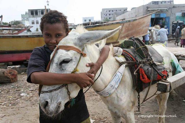 Tihama Al Hodeidah 3338